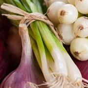 Cibuľová zelenina